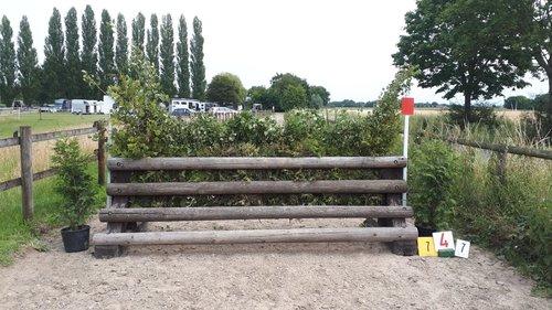Fence 7 - Bullfinch