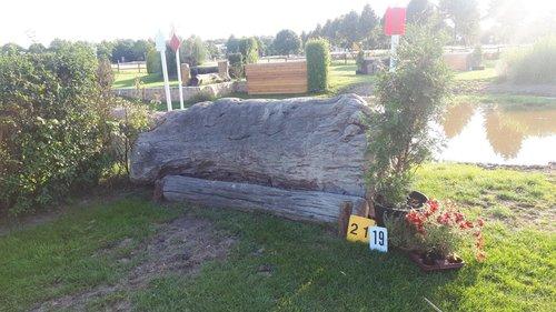 Fence 19 - Baum vor'm Wasser