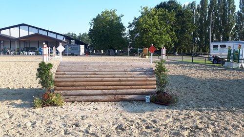 Fence 21 - Schweinerücken
