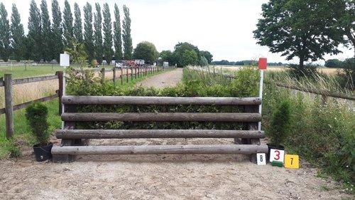 Fence 7 - Hecke