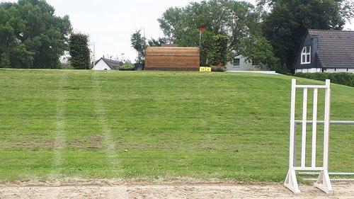Fence 14A - Schweinerücken