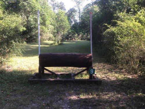Fence 9 - Narrow Log