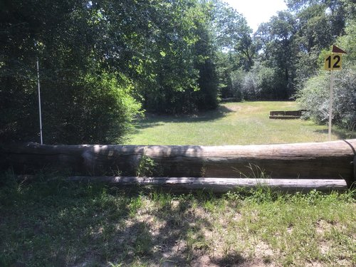 Fence 12 - Log at the Crater