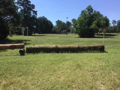Fence 16 - Last Log