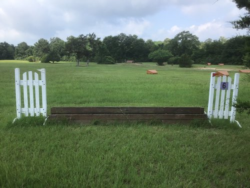 Fence 6 - Brush Box