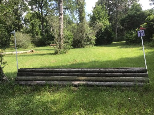 Fence 11 - Coop