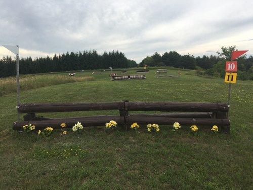 Fence 10 - Post & Rails