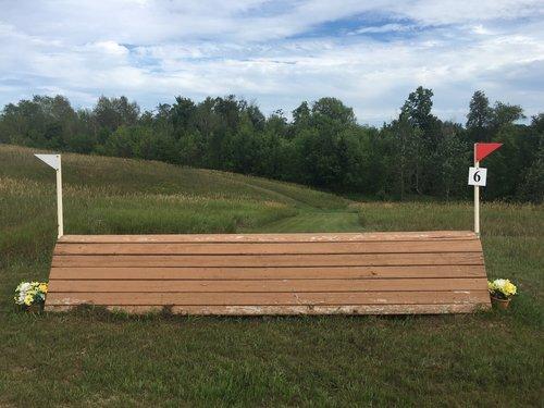 Fence 6 - Cedar Coop