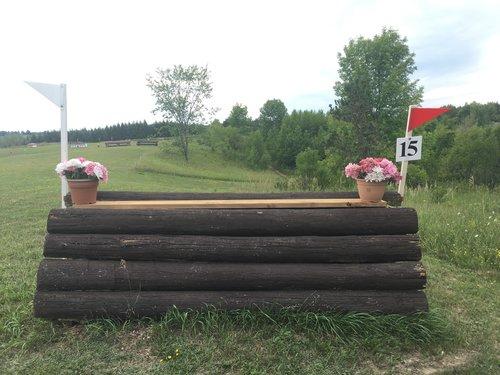 Fence 15 - Brown Coop