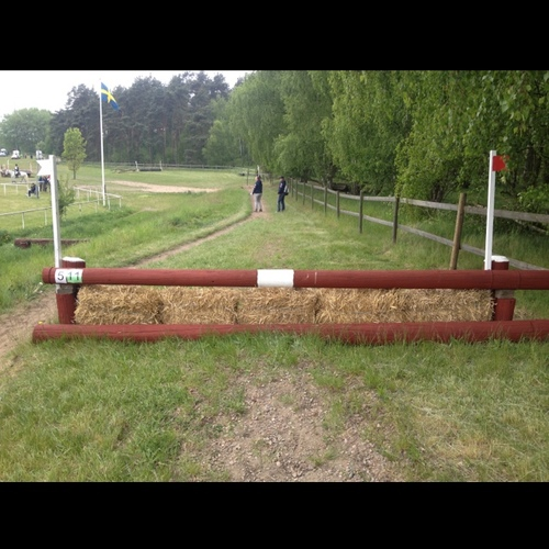 Fence 5 -