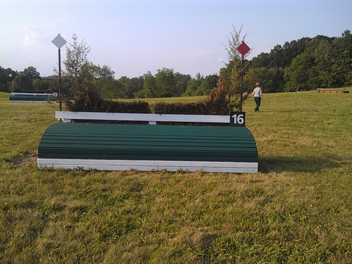 Fence 16 - Steeplechase