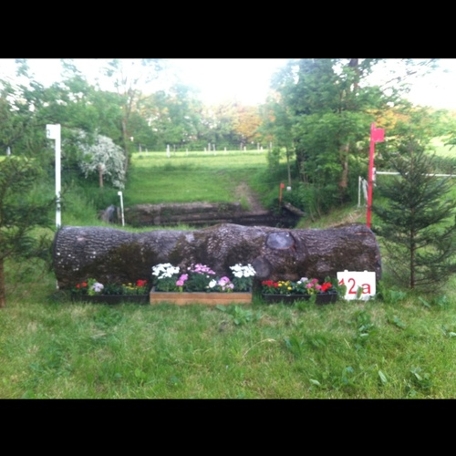 Fence 12A -
