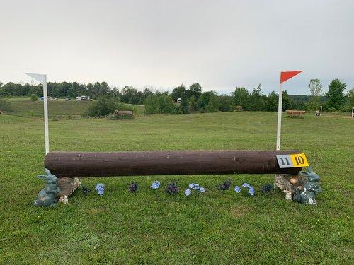 Fence 10 - Brown Bunny Log