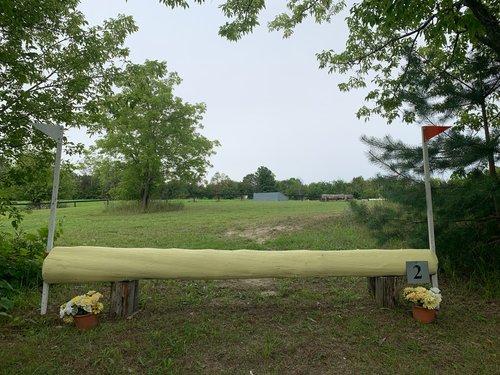 Fence 2 - Yellow Log