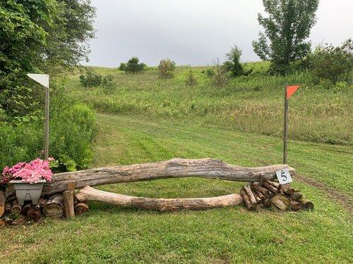 Fence 5 - Campfire Log
