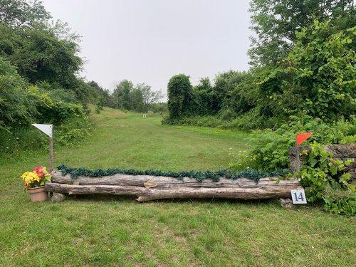 Fence 14 - Log & Brush