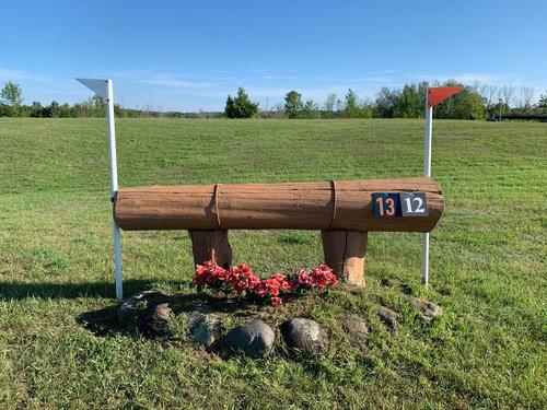 Fence 12 - Hanging Log