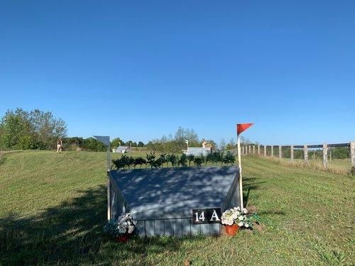 Fence 14A - Chevron