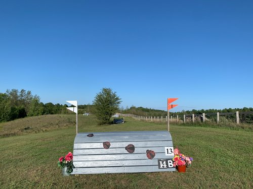Fence 14B - Option - Ladybug Coop