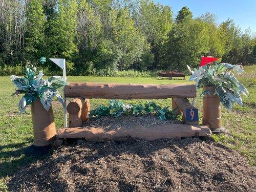 Fence 9 - Log over Garden