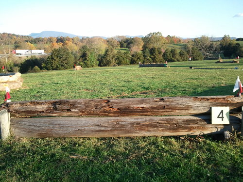 Fence 4 - Log