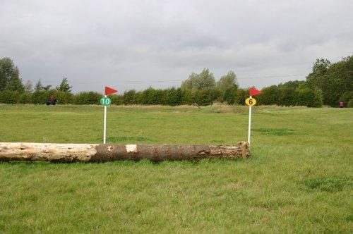 Fence 6 - Monkey Log