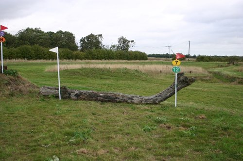Fence 7 - Bank Log