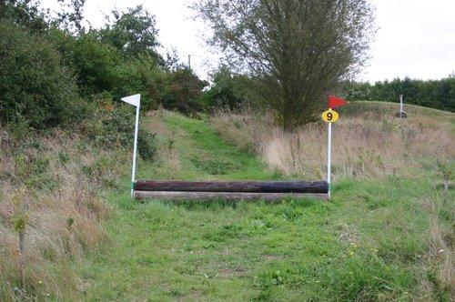 Fence 9 - Log Pile