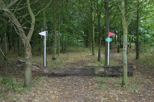 Fence 3 - Log
