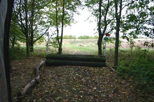 Fence 15 - Log Pile