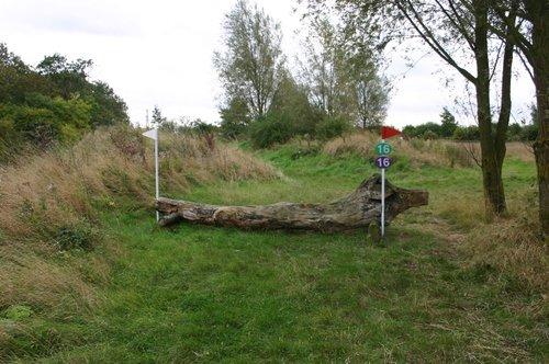 Fence 16 - Log
