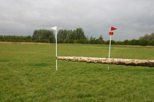 Fence 14 - Monkey Log