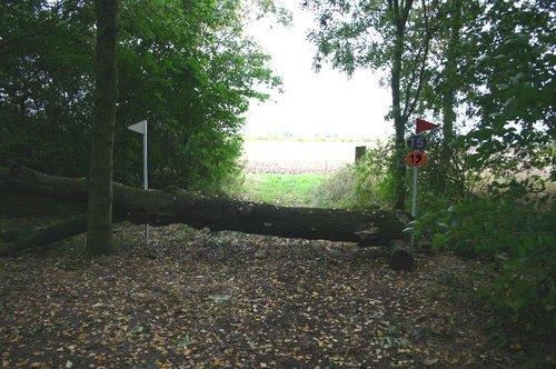 Fence 19 - Hanging Log