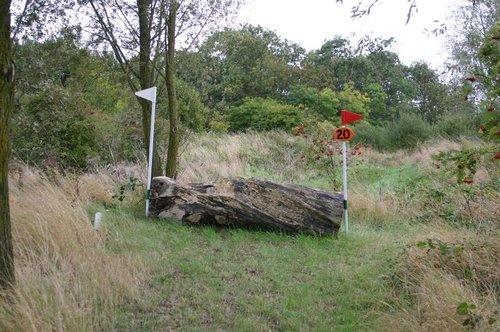 Fence 20 - Log Drop