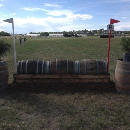 Fence 17B -