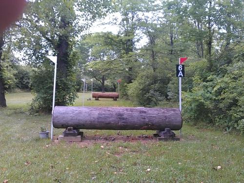Fence 6A - Log