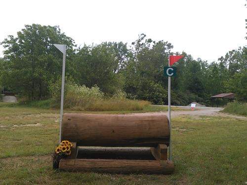 Fence 8C - Log