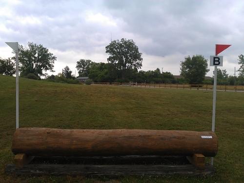 Fence 8B - Log