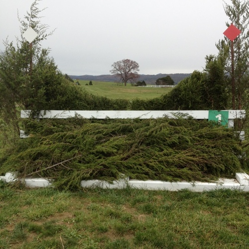 Fence 1 - Steeplechase