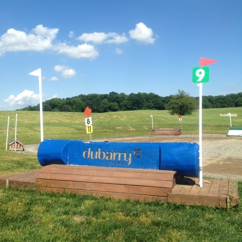 Fence 9 - Dubarry