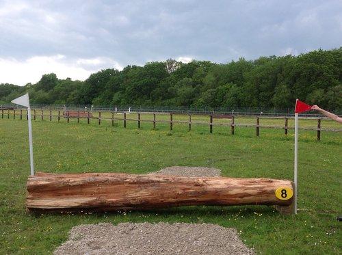 Fence 8 - Log