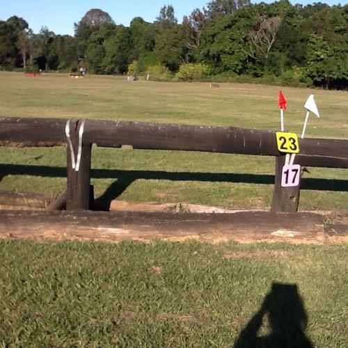 Fence 23 - Trakehner