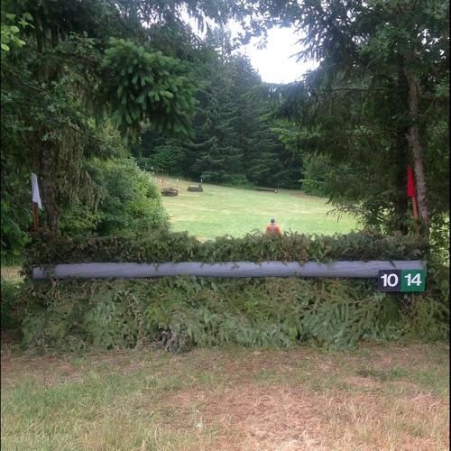 Fence 10 -
