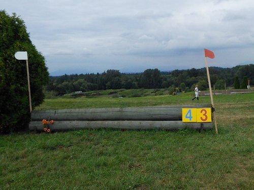 Fence 4 - Change of Field
