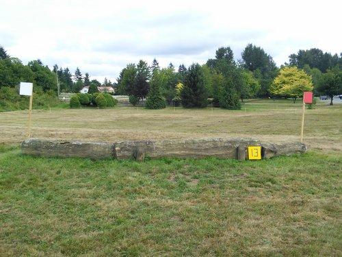 Fence 13 - Last Log