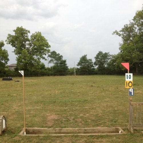 Fence 10 - Ditch
