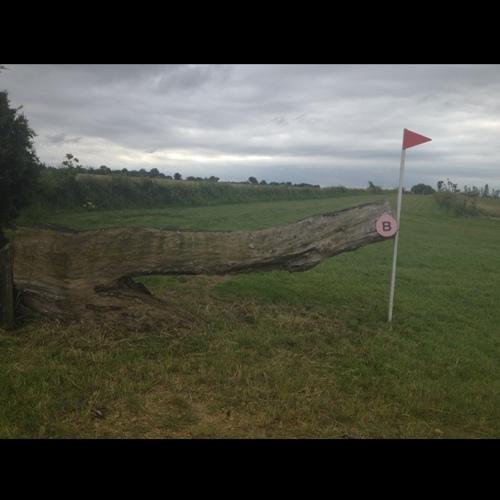 Fence 8B -