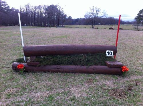 Fence 10 - Vee Log