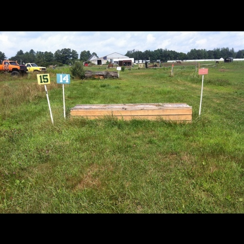 Fence 15 - Hay table (picture hay on it) ;)