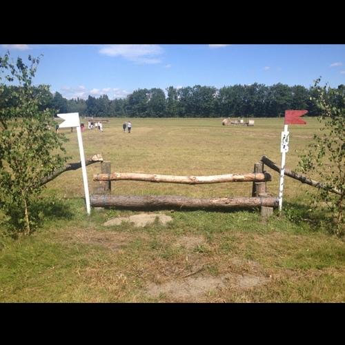Fence 2 - Stigsprång